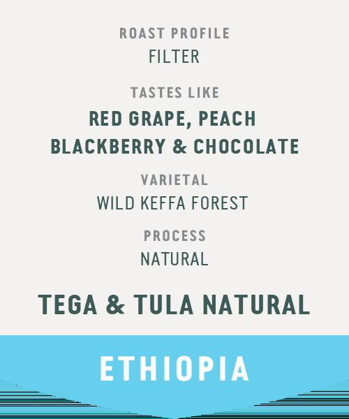 Tega & Tula Natural